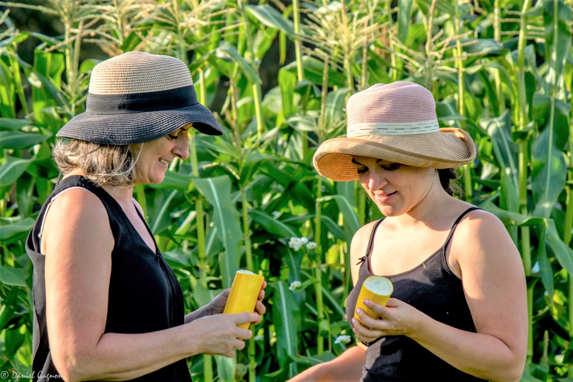 Échange fermier-consommateur